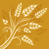 Stylized ears of wheat on yellow Royalty Free Stock Photography