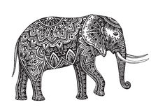 Stylized fantasy patterned elephant. Hand drawn vector illustrat