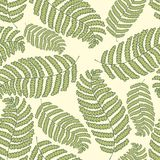 Stylized fern on a green background. Vector hand drawing seamless pattern. For design and decoration of home textiles, curtains, wallpaper, packaging and Stock Photography