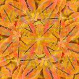 Stylized Floral Background Pattern Stock Photos