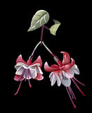 A stylized flower. In different versions Stock Illustration