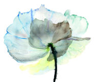 Stylized  flower illustration Royalty Free Stock Image