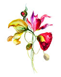 Stylized flowers Royalty Free Stock Image