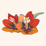 Stylized flowers. Vector illustration for design. Stylized flowers. Vector illustration for your design Royalty Free Stock Photography
