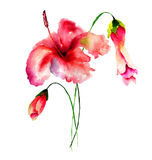 Stylized flowers watercolor illustration Stock Image