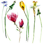 Stylized flowers watercolor illustration Stock Photography