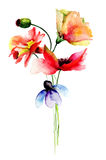 Stylized flowers watercolor illustration Stock Image