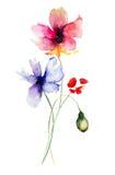 Stylized Gerber flowers Stock Photo