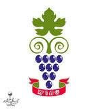 Stylized grape vine vector illustration. Winery symbol Royalty Free Stock Images