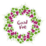 Stylized graphic image of a vine with grapes. Stock Image