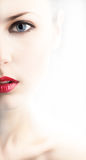 Stylized half face of beautiful young woman Royalty Free Stock Photo