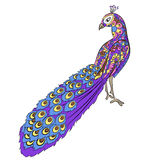 Stylized hand drawing peacock Royalty Free Stock Photo