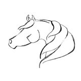 Stylized Hand Drawn Arabian Horse Stock Photo