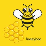 Stylized happy little honeybee vector illustration
