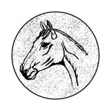 The stylized head of a horse Stock Images
