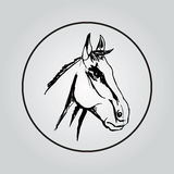 The stylized head of a horse. Vector image of horse's head on white background Stock Photos
