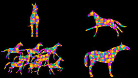 Stylized horses. 7 different animations. Alpha channel. Alpha matte. 4K. stock video
