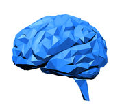 Stylized human brain. With a 3D polygon look Royalty Free Stock Image