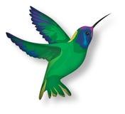 Stylized hummingbird. Illustration on white background royalty free illustration