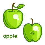 Stylized illustration of fresh apple on white Stock Photography