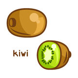 Stylized illustration of fresh kiwi on white Stock Images