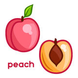 Stylized illustration of fresh peach on white Stock Photos