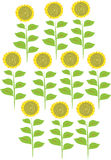 Stylized illustration of ten sunflowers. An illustration of ten stylized sunflowers with yellow petals and green leaves Stock Image
