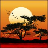 Tree at sunset. Stylized illustration of tree on sunset background Vector Illustration