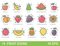 Stylized illustrations of fruit. Vector icons Stock Photography