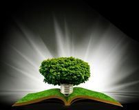 Image of tree in the shape of heart on the open book. Stylized image of tree in the shape of heart on the open book Royalty Free Stock Photo