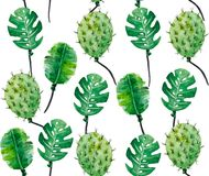 Watercolor pattern of monstera leaves and cacti. Stylized images of plants for printed products. It is possible to use as a pattern or to disassemble into Royalty Free Stock Image