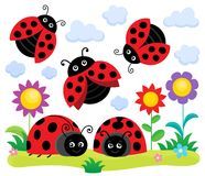 Stylized ladybugs theme image 1 Stock Photo