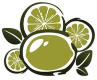 Stylized lime Stock Photos