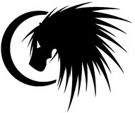 Stylized lion in black isolated stock photography