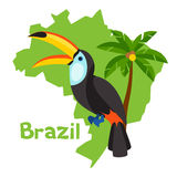 Stylized map of Brazil with toucan and palm tree Royalty Free Stock Images