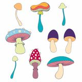 Stylized mushrooms in cartoon style. Vector collection for your design Royalty Free Stock Image