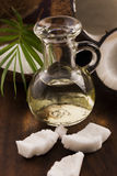 stylized olja för kokosnötdroppillustration Royaltyfri Foto