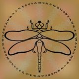 Stylized outline dragonfly on sandy brown ethnic blurred background framed with circle of alchemy symbols Totem animal spirit Hand. Drawn fantasy design for Stock Photos
