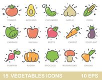 Stylized outlines of vegetables. Vector icons Stock Photos