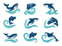 Stylized pictures of marine animals. Sharks, fishes and others. Symbols for logo design. Vector fish animal, marine shark in water illustration Stock Images