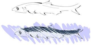 Stylized pilchard stock illustration
