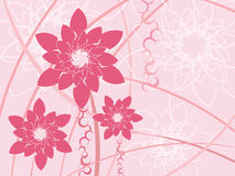 Stylized pink flowers background Royalty Free Stock Images