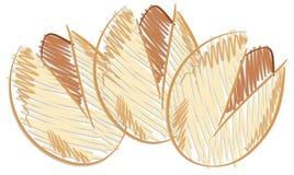 Stylized pistachios isolated illustration Stock Images
