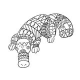 Stylized platypus isolated on white background. Freehand ornamental duckbill for children coloring book vector illustration