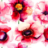 Stylized Poppy flowers illustration Royalty Free Stock Image