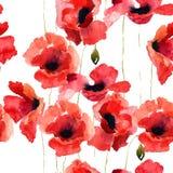 Stylized Poppy flowers illustration Stock Photo
