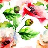 Stylized Poppy flowers illustration Royalty Free Stock Images