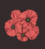 Stylized poppy flowers Royalty Free Stock Photography