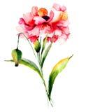 Stylized Poppy flowers Royalty Free Stock Photo