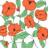 Stylized Poppy illustration Stock Photography